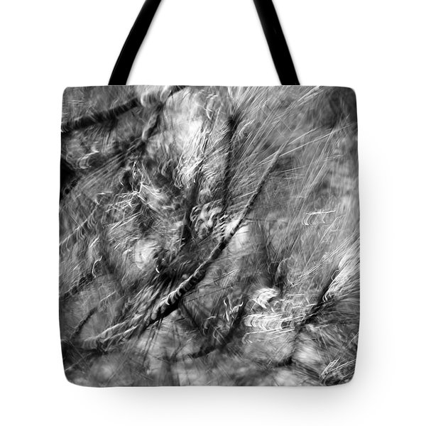 And An Additional Ten Trees On A Given Block Corresponded To A One-per-cent Increase In How Healthy  Tote Bag by Danica Radman