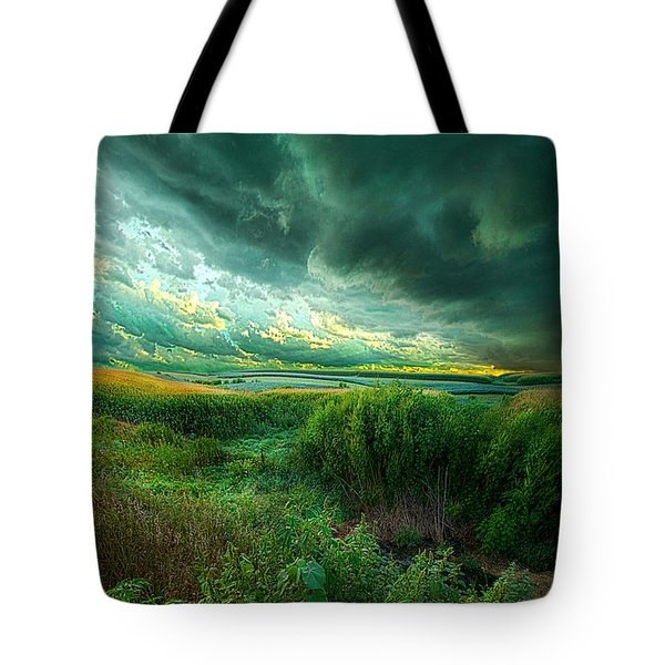 And For A Moment It Was Silent Tote Bag by Phil Koch