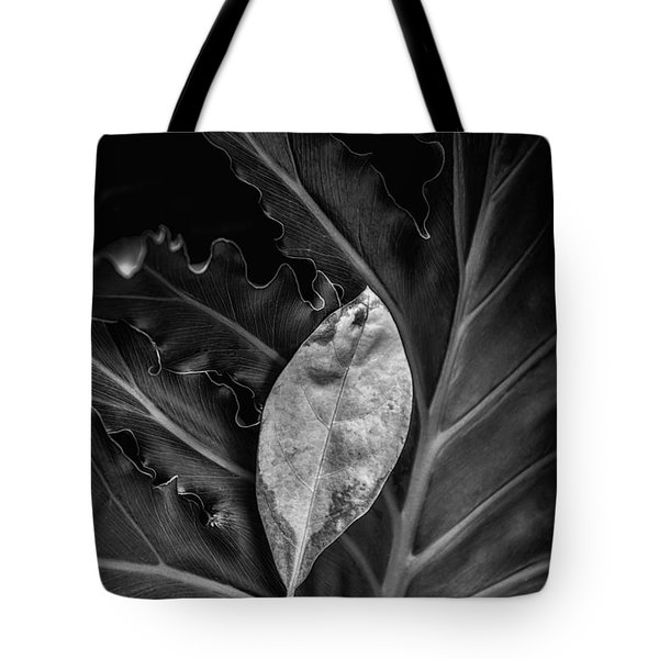 And I Will Catch You If You Fall Tote Bag