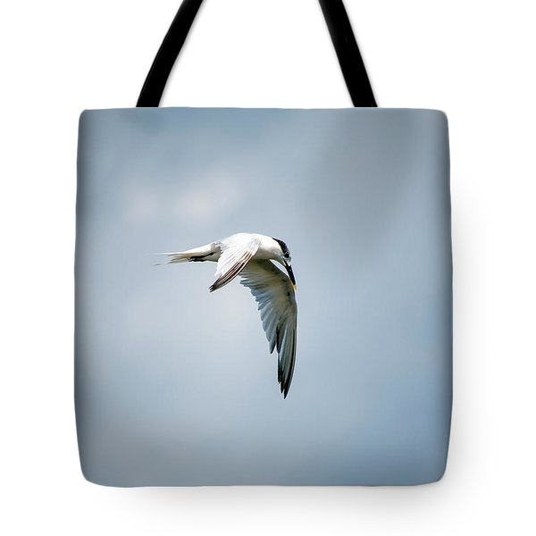And Still The World Terns Tote Bag