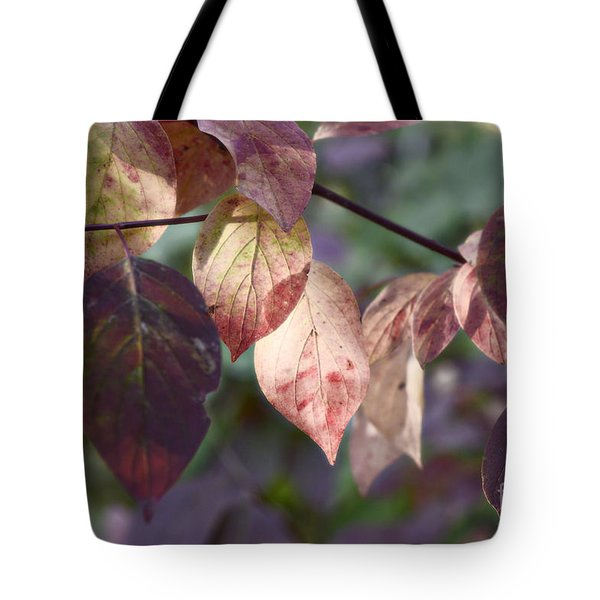 Tote Bag featuring the photograph And The Light... by Cendrine Marrouat
