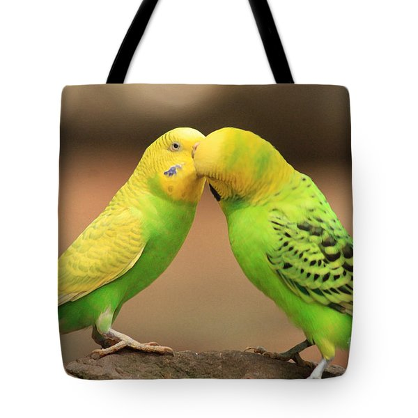 And Then He Kissed Me Tote Bag