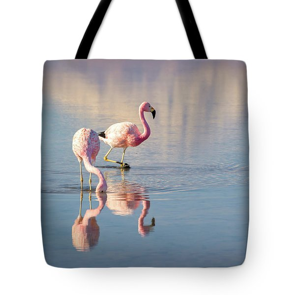Andean Flamingos In Chile Tote Bag