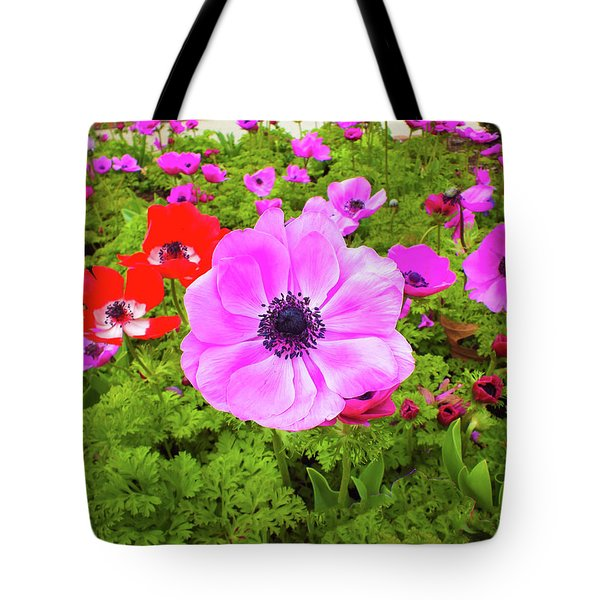 Anemone City  Tote Bag