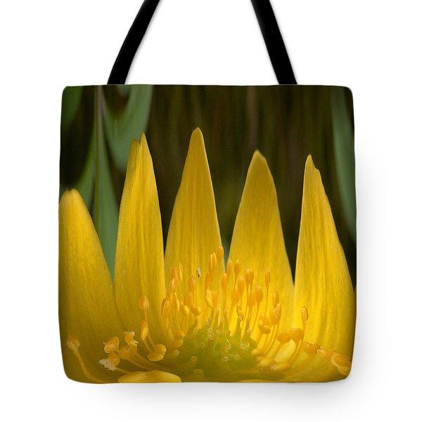 Anemone Flames Tote Bag by Jouko Lehto