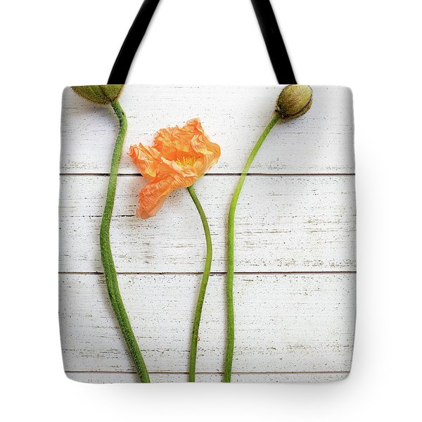 Tote Bag featuring the photograph Anemone Pods by Rebecca Cozart