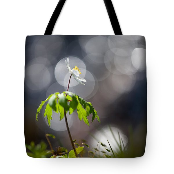 Anemone  Tote Bag by Rikard Strand