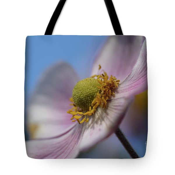 Anemone Tomentosa Close Up Tote Bag