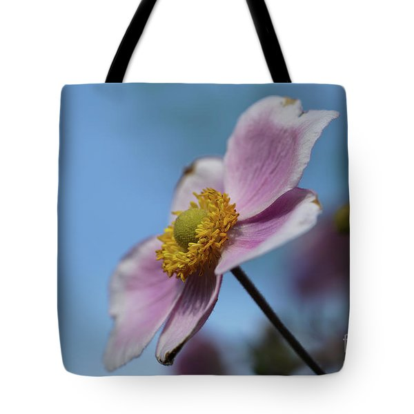 Anemone Tomentosa Flower Tote Bag