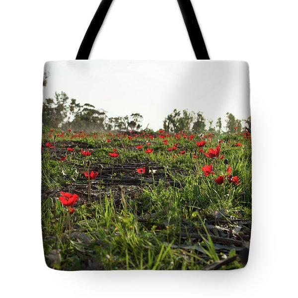 Tote Bag featuring the photograph Anemones Forest by Yoel Koskas