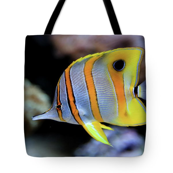 Tote Bag featuring the photograph Angel In Striped Pajamas by T A Davies