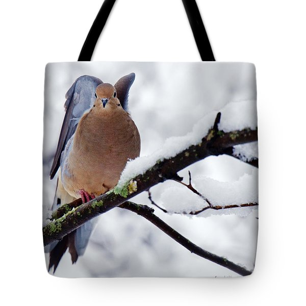 Tote Bag featuring the photograph Angel Mourning Dove by Angel Cher