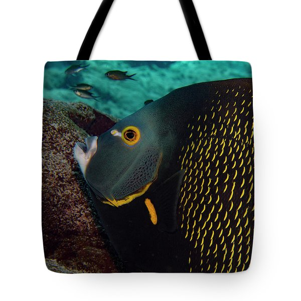 Tote Bag featuring the photograph Angel Profile by Jean Noren