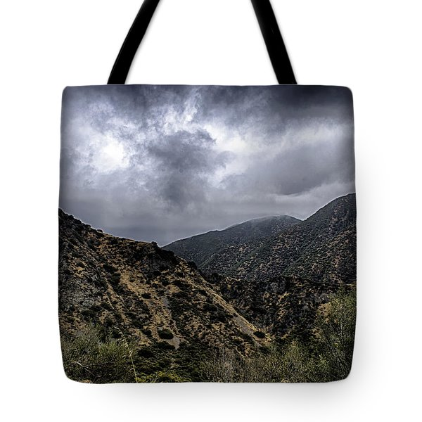 Tote Bag featuring the photograph Angeles National Forest 2a by Joseph Hollingsworth