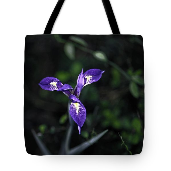 Angelpod Blue Flag Tote Bag by Sally Weigand