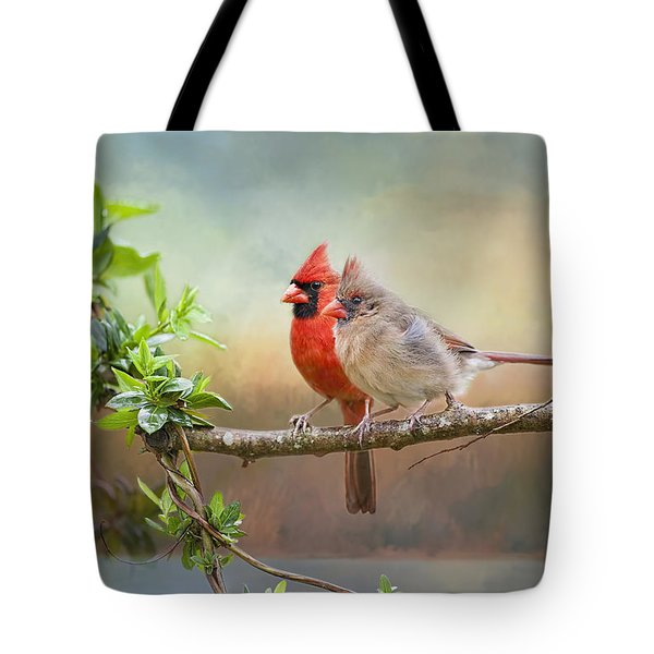 Angels Of The Morning And Evening Tote Bag