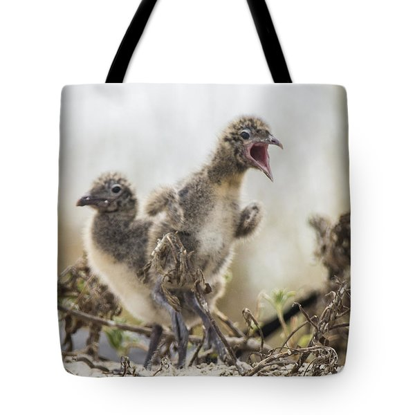 Tote Bag featuring the photograph Angry Birds by Paula Porterfield-Izzo
