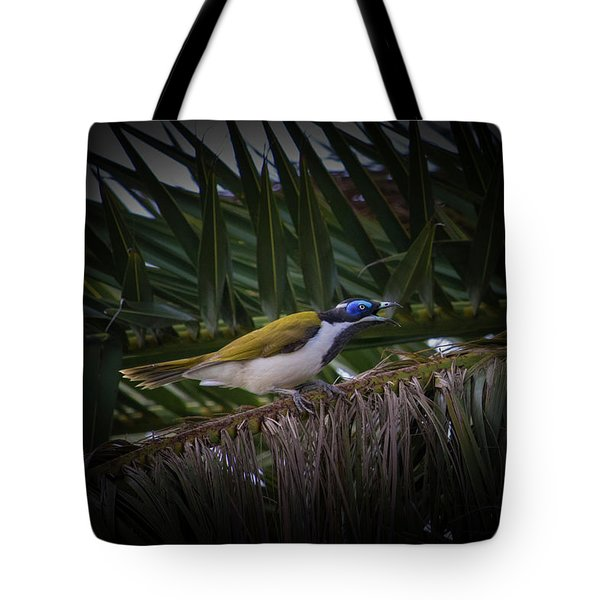 Angry Little Bird  Tote Bag