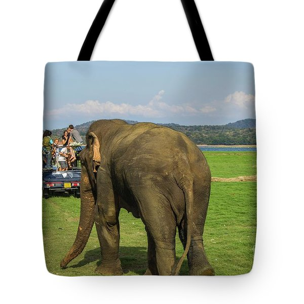 Tote Bag featuring the photograph Angry Male Elephant Near Safari Jeeps by Patricia Hofmeester