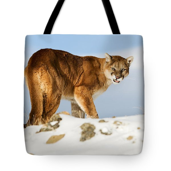 Angry Mountain Lion Tote Bag