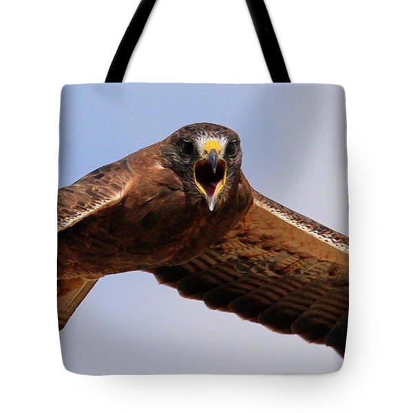 Angry Swainson's Hawk Tote Bag
