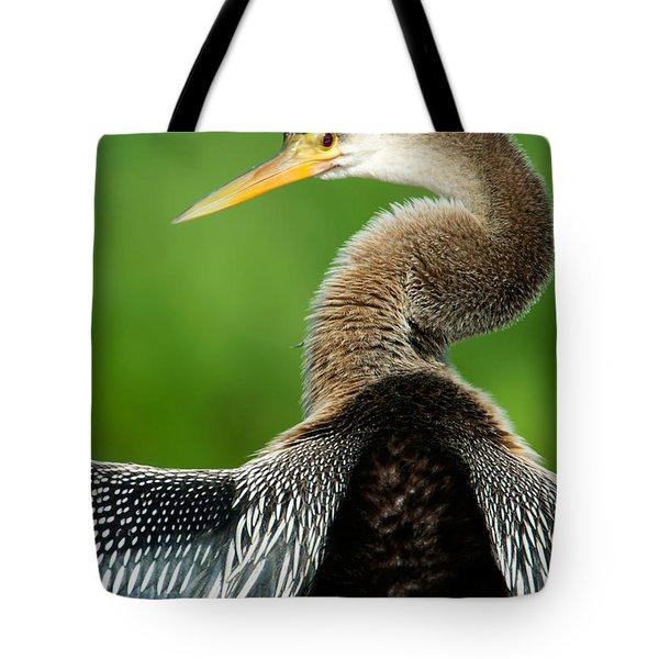 Anhinga Anhinga Anhinga, Pantanal Tote Bag