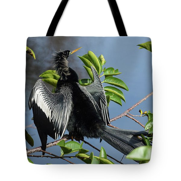 Anhinga Beauty Shot Tote Bag