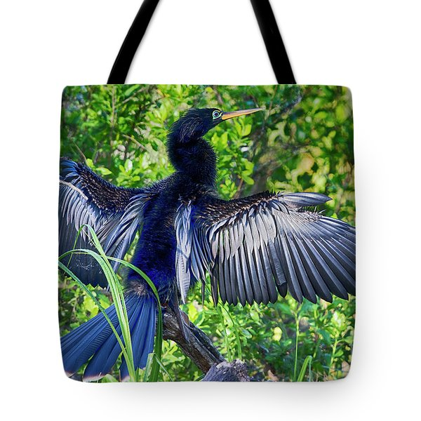 Tote Bag featuring the photograph Anhinga Blue Eye by Deborah Benoit