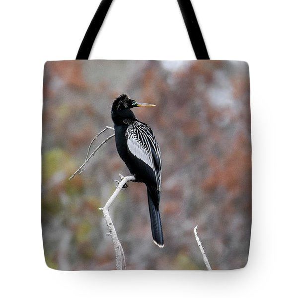 Tote Bag featuring the photograph Anhinga by Gary Wightman