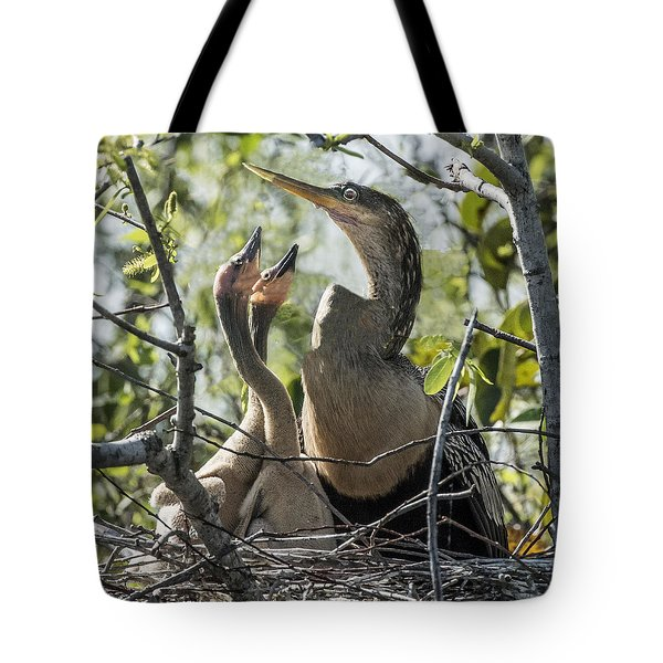 Anhinga In Nest With Her Chicks Tote Bag