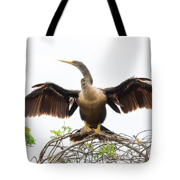 Tote Bag featuring the photograph Anhinga by Michael D Miller