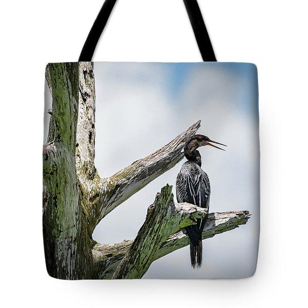 Anhinga Perched Treetop  Tote Bag