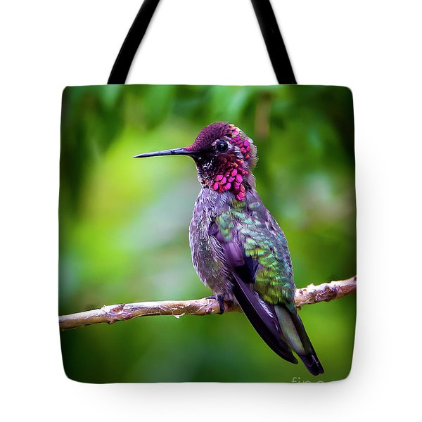 Anna Humming Bird Tote Bag