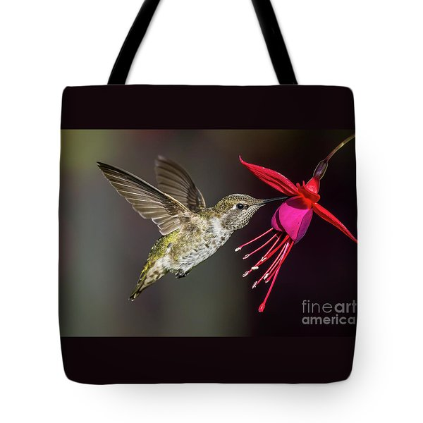 Anna Immature Hummingbird Tote Bag