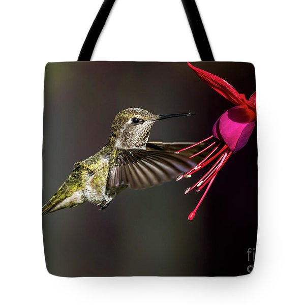Anna Juvenile Hummingbird Tote Bag