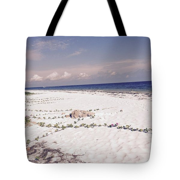 Tote Bag featuring the photograph Anna Maria Island Beyond The White Sand by Jean Marie Maggi