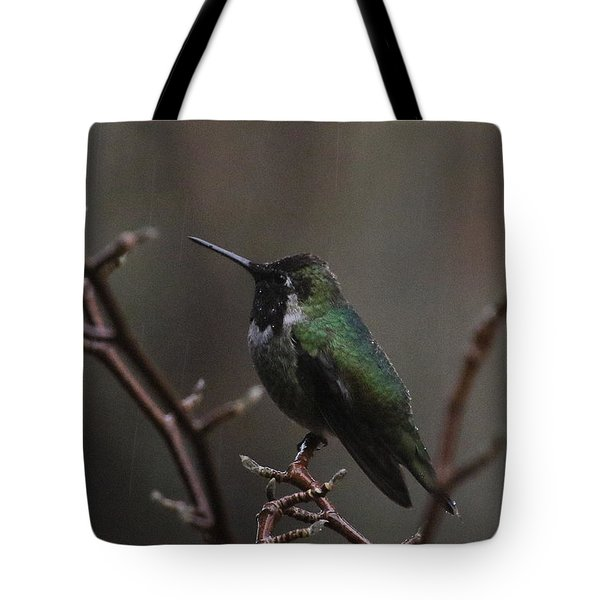 Anna Rainwings Tote Bag