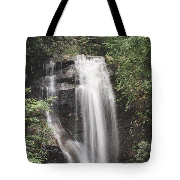 Anna Ruby Falls Tote Bag by David Collins