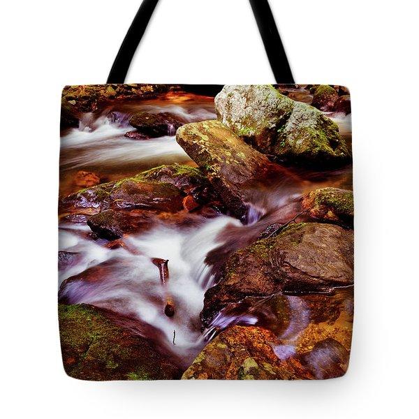 Anna Ruby Falls - Smith Creek 006 Tote Bag