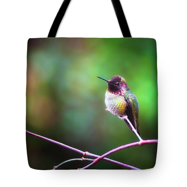 Anna's Hummingbird I Tote Bag