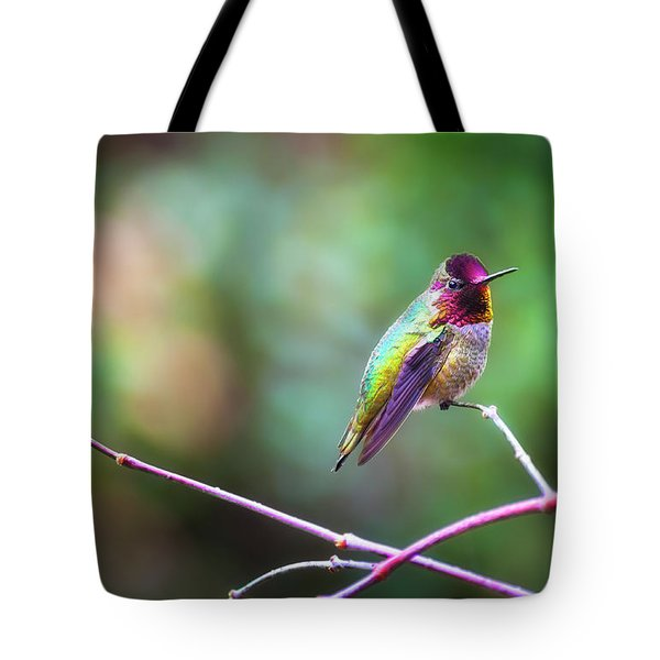 Anna's Hummingbird II Tote Bag