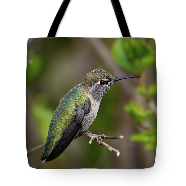 Anna's Hummingbird On Lime Tree Tote Bag