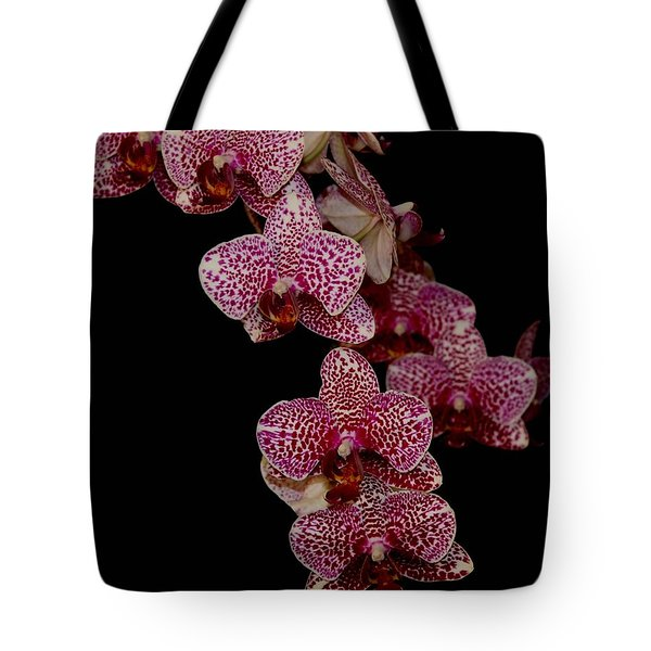 Anniversary Orchid Plant On Black Tote Bag