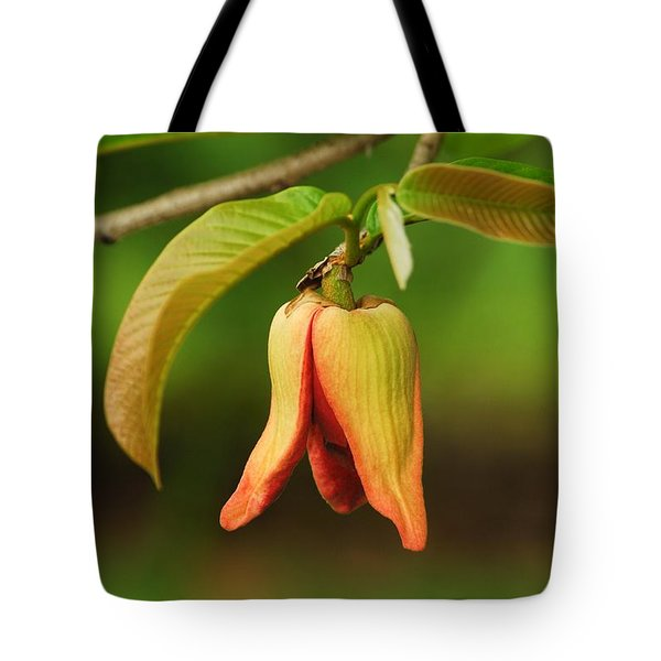 Annona Purpurea Flower Tote Bag