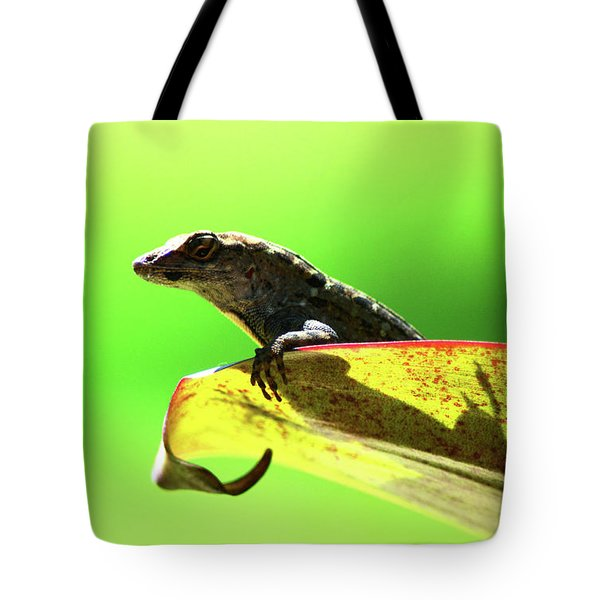 Anole In Green Tote Bag