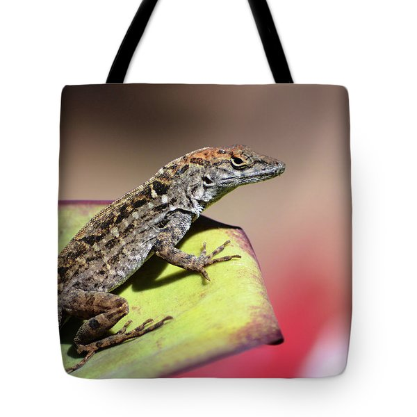 Anole In Rose Tote Bag