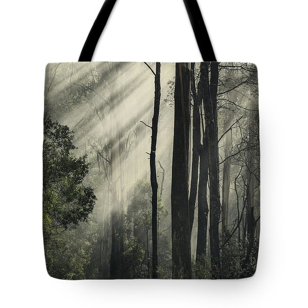 Anothen Tote Bag by Andrew Paranavitana