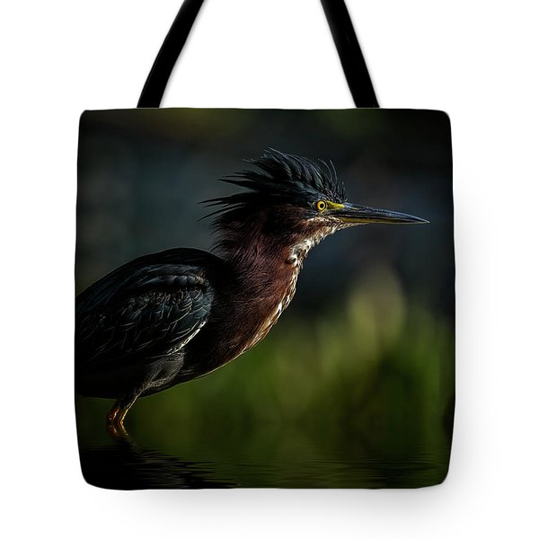 Another Bad Hair Day Tote Bag