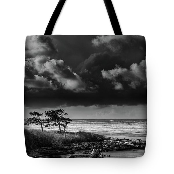 Tote Bag featuring the photograph Another Day At Kalaloch Beach by Dan Mihai