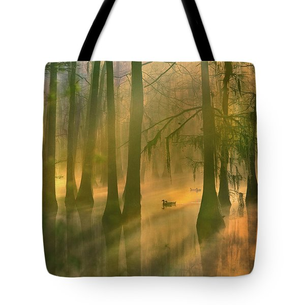 Another Day Tote Bag by Tim Fitzharris